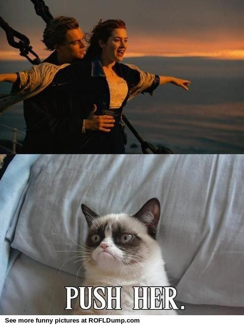 New love story #meme #funny #lol #cat
