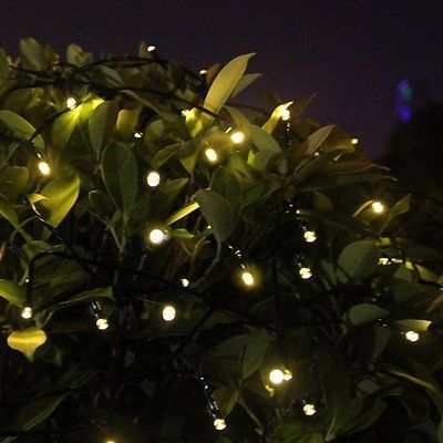 Solar powered string fairy lights outdoor garden xmas wedding solar powered string fairy lights outdoor garden xmas wedding light bush white all products pinterest outdoor gardens lights and decorating mozeypictures Image collections