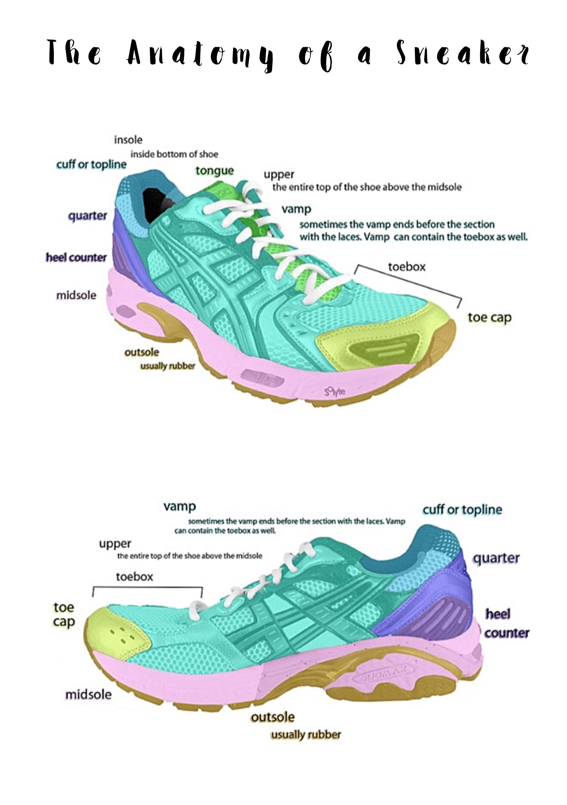 The Anatomy Of A Sneaker Shoes Boots Pinterest Shoe Boot