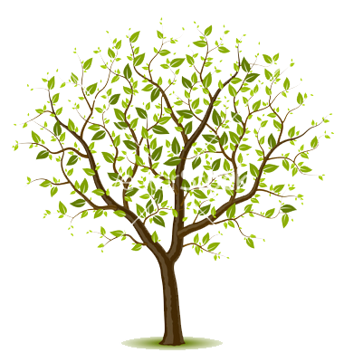 Tree vector. Spring wall designs in