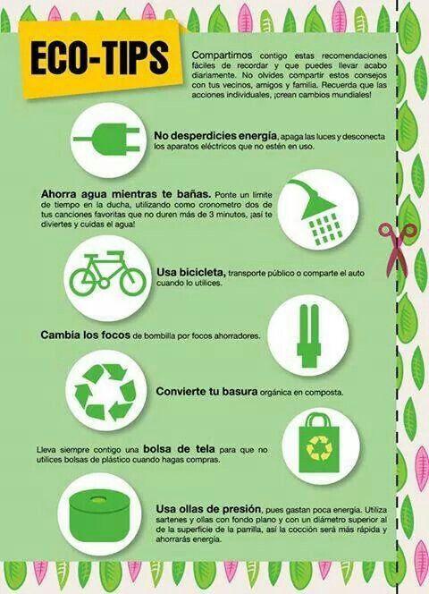 Eco Tips Salud Y Medio Ambiente Efemerides Ambientales