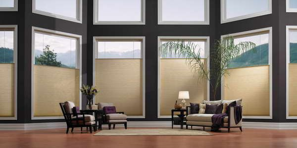 Vertical Cellular Shades With Carpet Flooring
