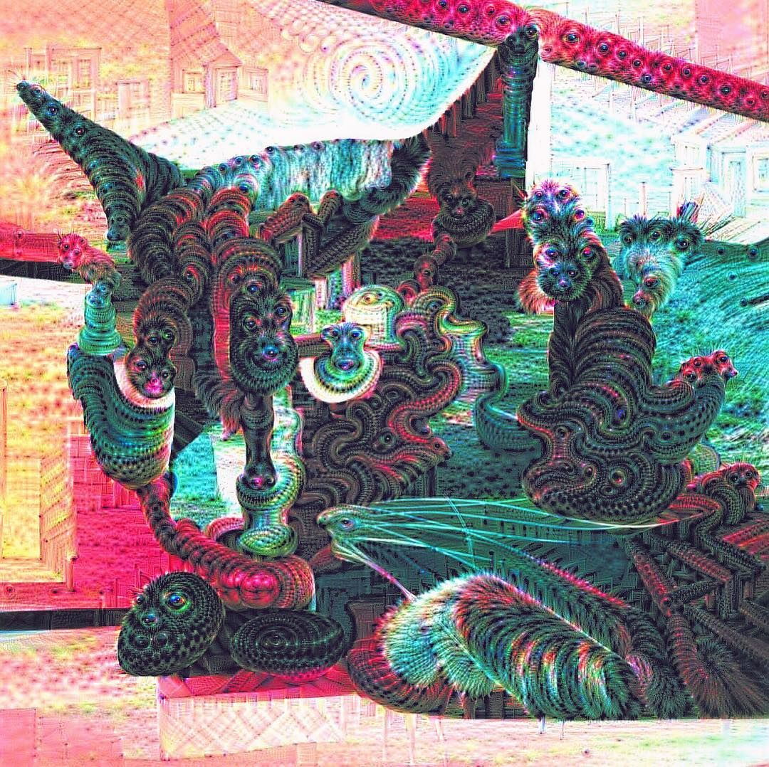 #weirdcatwednesday #deepdream #cat #art #psychedelic #blackcatsofinstagram #trippy #blackcat #psicodelico #catnip #dreaming #imaginary #deepdreamart #catsofinstagram #surreal #catlife #electriccatnip by electriccatnip