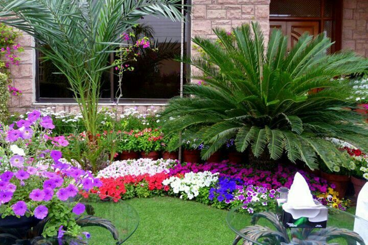 Behiye Zaterogullari Adli Kullanicinin Gardens Panosundaki Pin Bahce