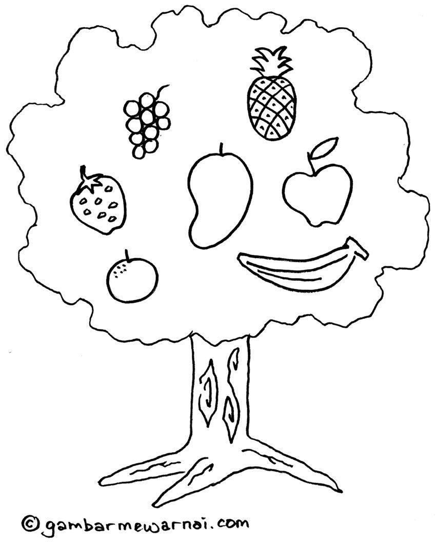 Mewarnai Gambar Pohon Buah Buahan
