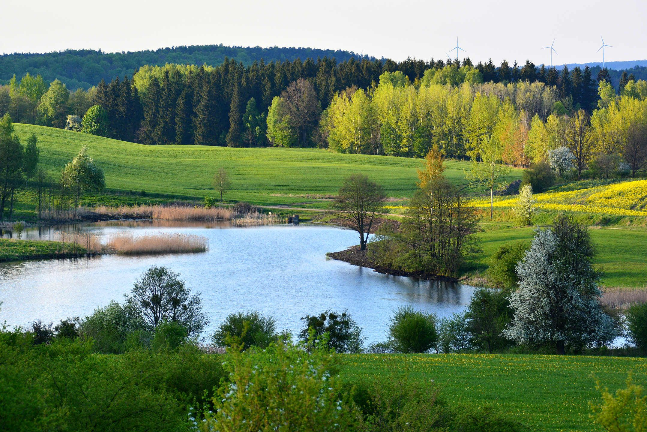 Spring Landscape With Lake Beautiful Landscapes Landscape Spring Landscape