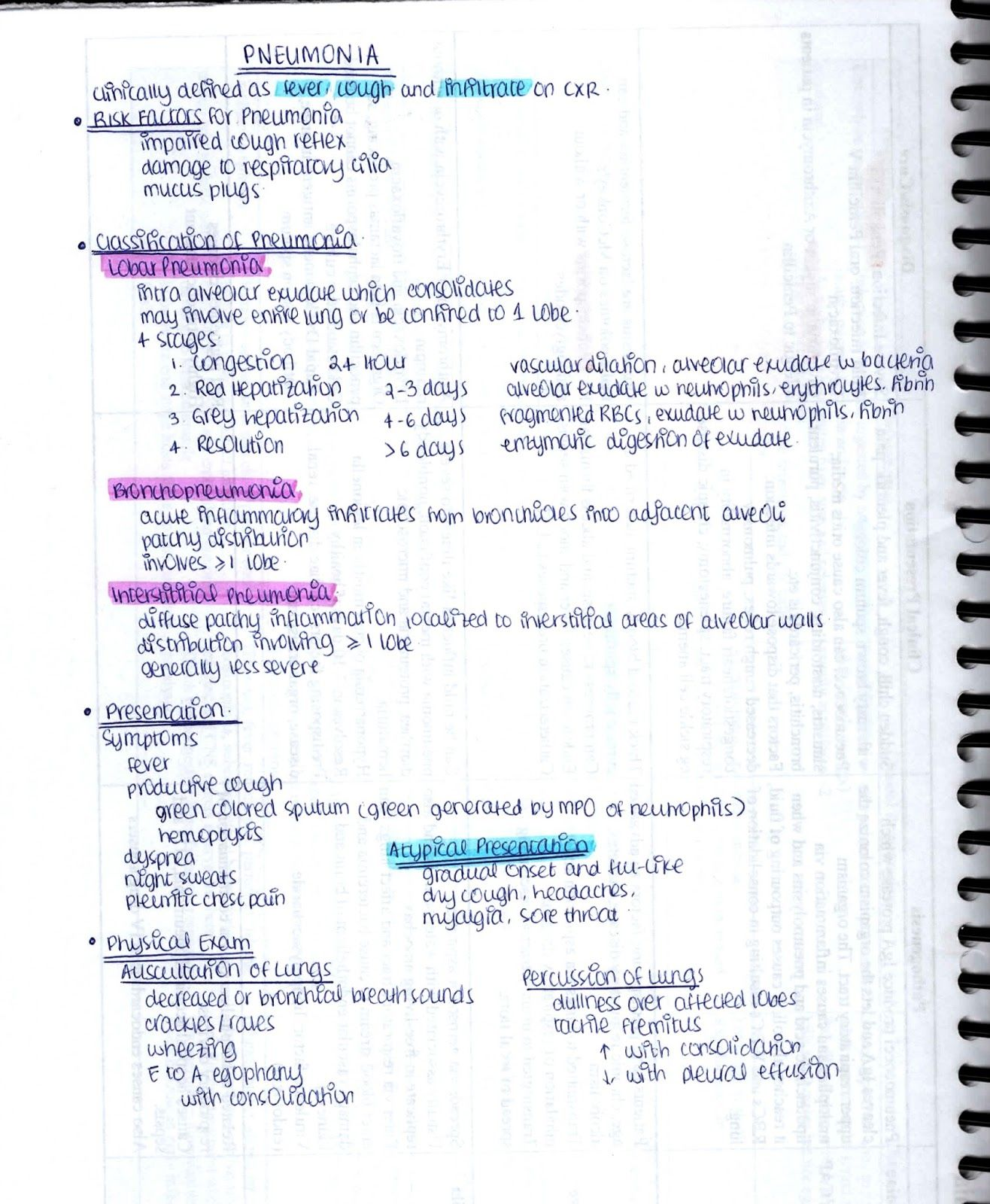 The Complete Guide on How To Study Microbiology in Med School