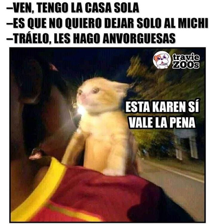 Memes De Karen Y Su Gato Segunda Parte Memes En Espanol La Mejor Recopilacion De Memes Lo Mas Viral De Internet Memes Memes Divertidos Memes Comicos