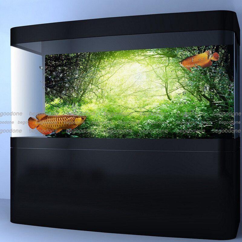 Details About Forest Aquarium Background Poster Hd Fish Tank Backdrop Customize Aquarium Backgrounds Fish Tank Aquarium Landscape