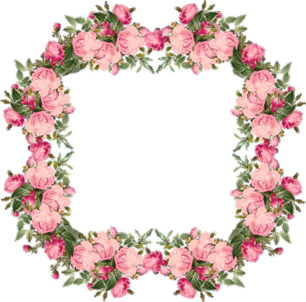 Vintage Pink | free vintage roses frames and border png ...