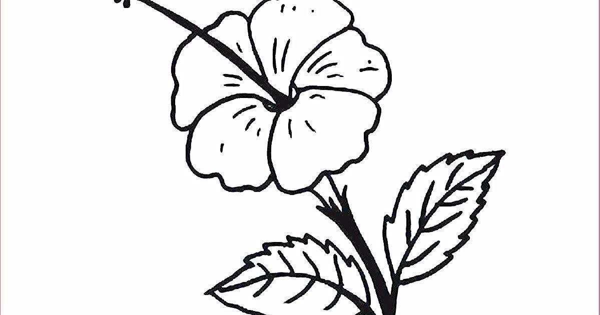 21 Gambar Bunga Teratai Yang Mudah Digambar 30 Gambar Sketsa Bunga Mudah Bunga Matahari Mawar Tulip Download 15 Gambar Home Decor Decals Decor Home Decor