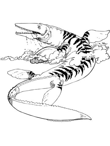 Tylosaurus Mosasaur Coloring Page From Mosasaur Category Select