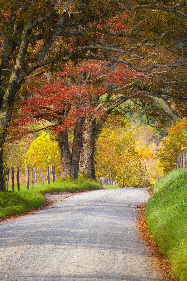 Fall in Tennessee Road Trip Itinerary – the Best P