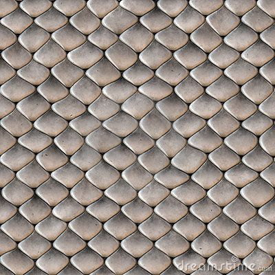 Snake Skin Scales Seamless Texture Scale Skin Snake Skin Seamless Textures