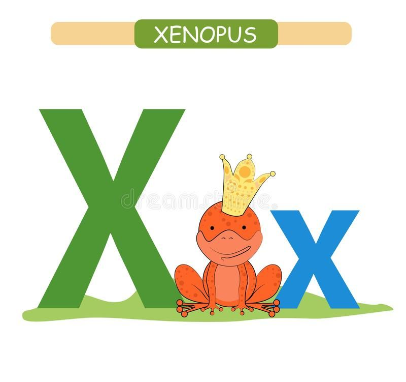 Letter X And Funny Cartoon Xenopus Animals Alphabet A Z Cute Zoo Alphabet In Vector For Kids Learning Englis In 2020 Animal Alphabet Kids Learning English Vocabulary