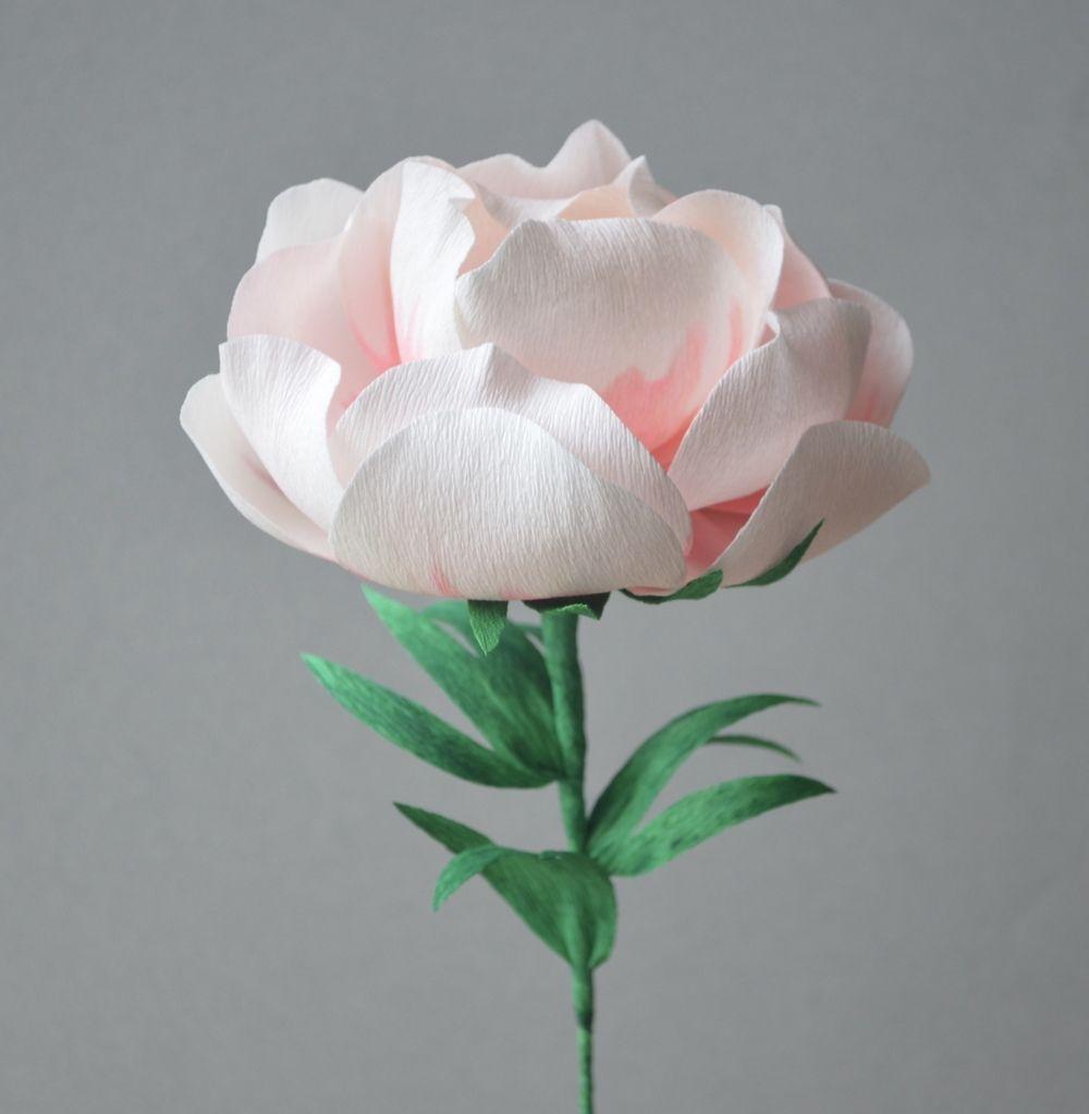 Handmade crepe paper flowers paper flowers pinterest crepe handmade crepe paper flowers mightylinksfo
