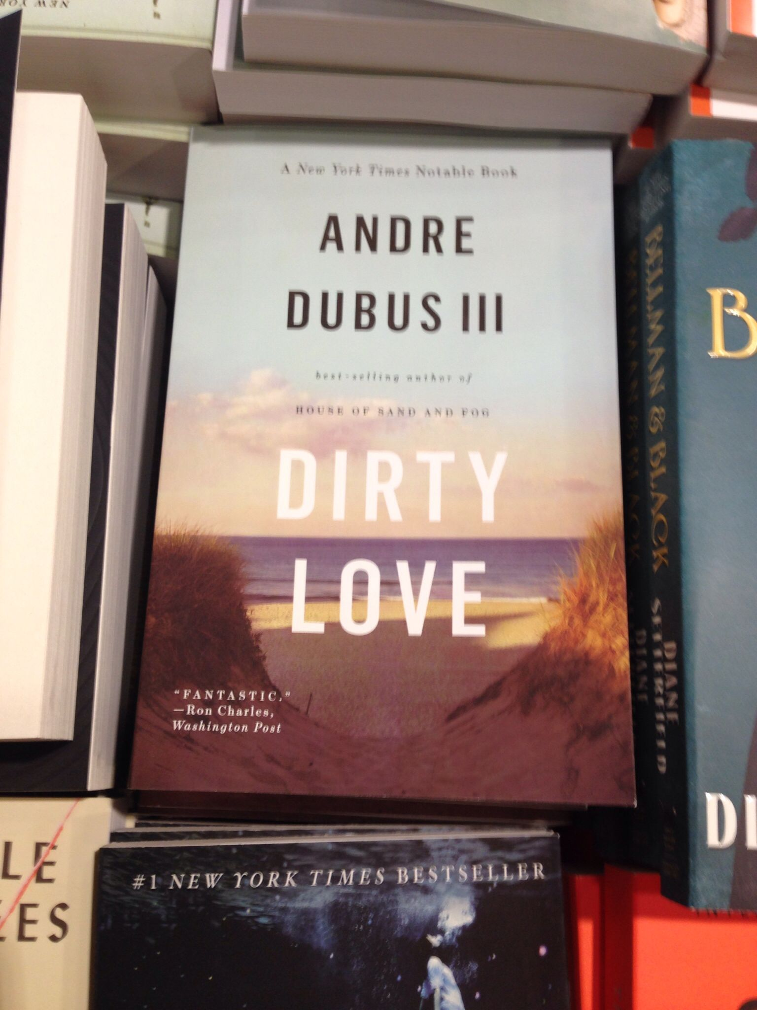 Dirty Love - Andre Dubus III | Ashland bookstore browsing | added to summer  reading list