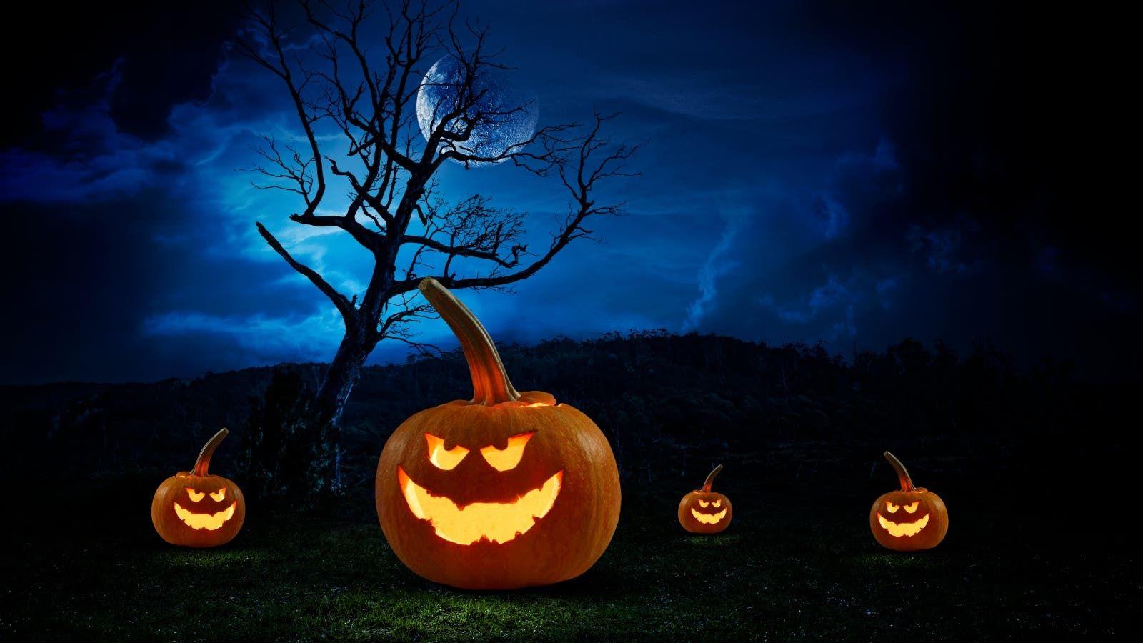 انضموا إلى حفلة هالوين قرب المسبح في ميليا ديزرت بالم دبي Pumpkin Carving Carving Pumpkin