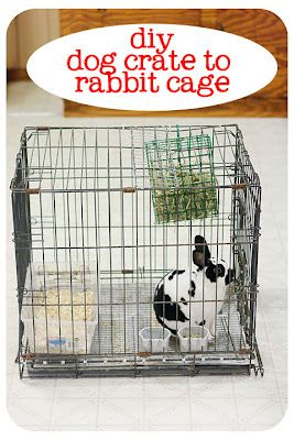 How To Upcycle An Old Dog Crate Into A Rabbit Cage