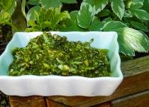 Giersch-Pesto Rezept