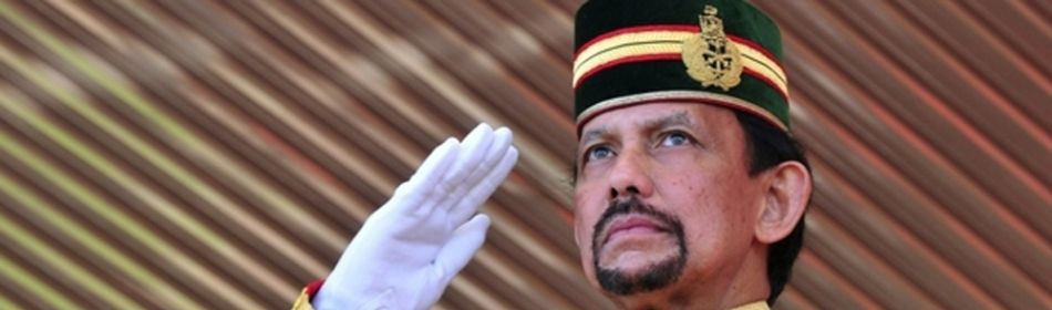 Sultan of brunei is Sultan of Brunei by profession and have a Net