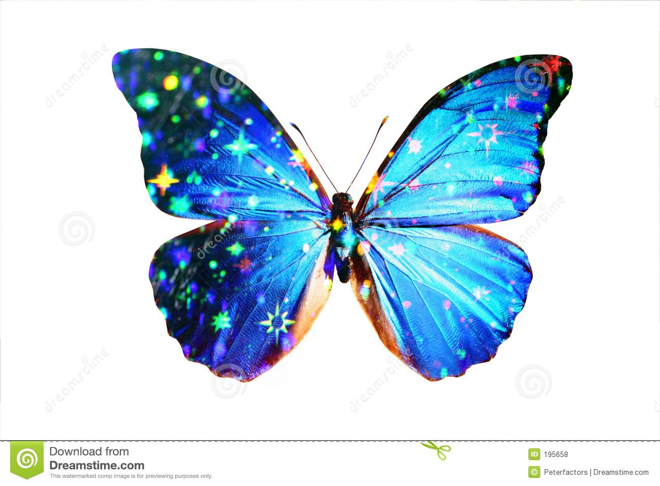 Pin Blue Morpho Butterfly Tattoo Meaning As Performers on Pinterest