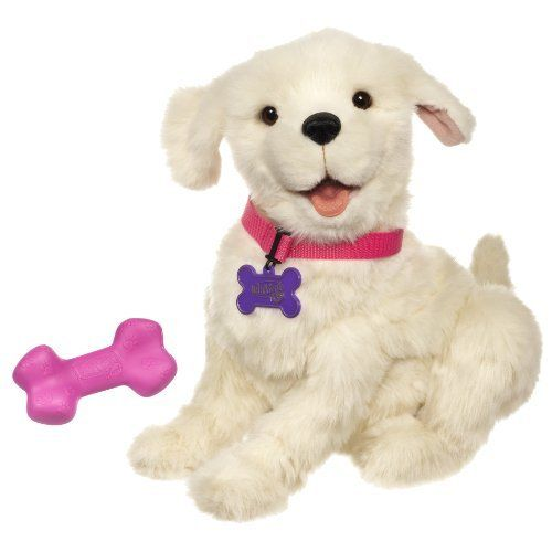Pet Dog Cat Weasel Motorized Rolling Ball Appears Jump Moving Alive Toy To View Further For This Item Visit The Image Link Note Buy A Cat Dog Cat Cats Meow