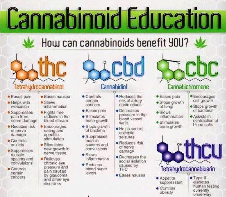 Cannabinoid Education Medical Marijuana Research Pinterest