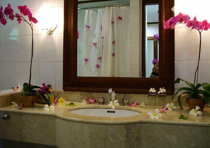 1001 + Idées pour votre plante pour salle de bain + ambiances spa et zen | Salle de bain ...