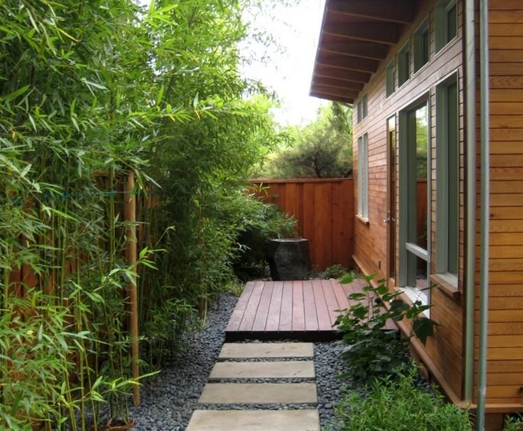 Bambus als Sichtschutz im Hinterhof - coole Idee Häuser - gartengestaltung modern sichtschutz
