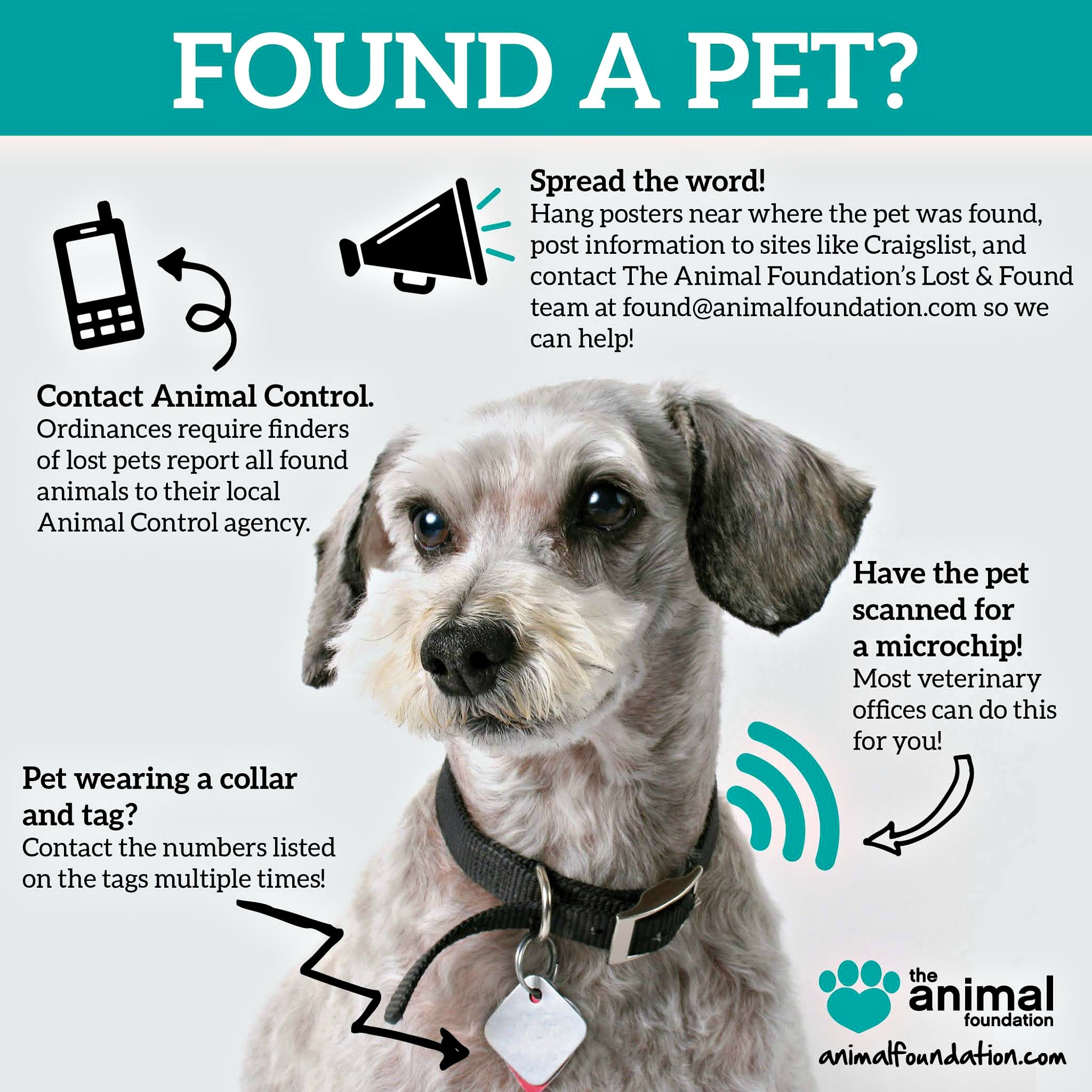 Found A Loose Or Wandering Dog Or Cat Here S How To Help Losing A Pet Losing A Dog Pets