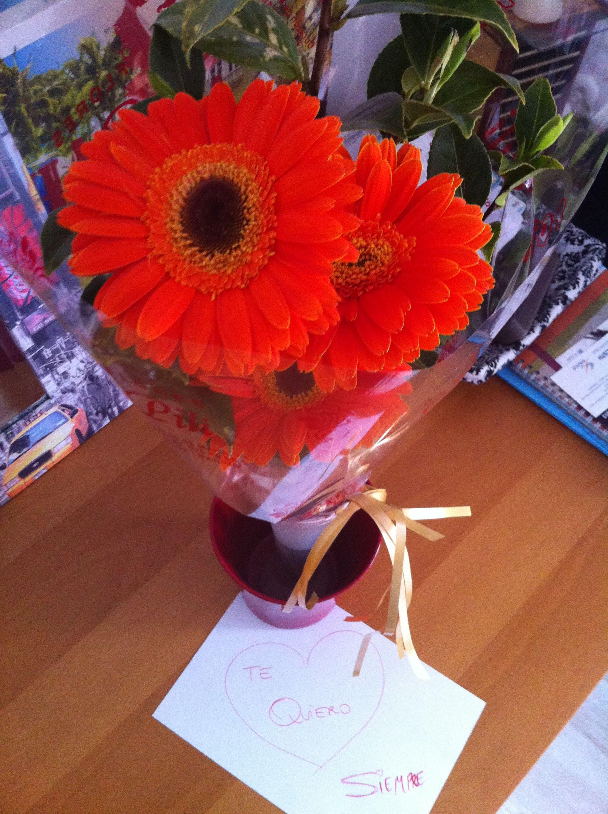 Cómo me gusta regalarte flores ;)