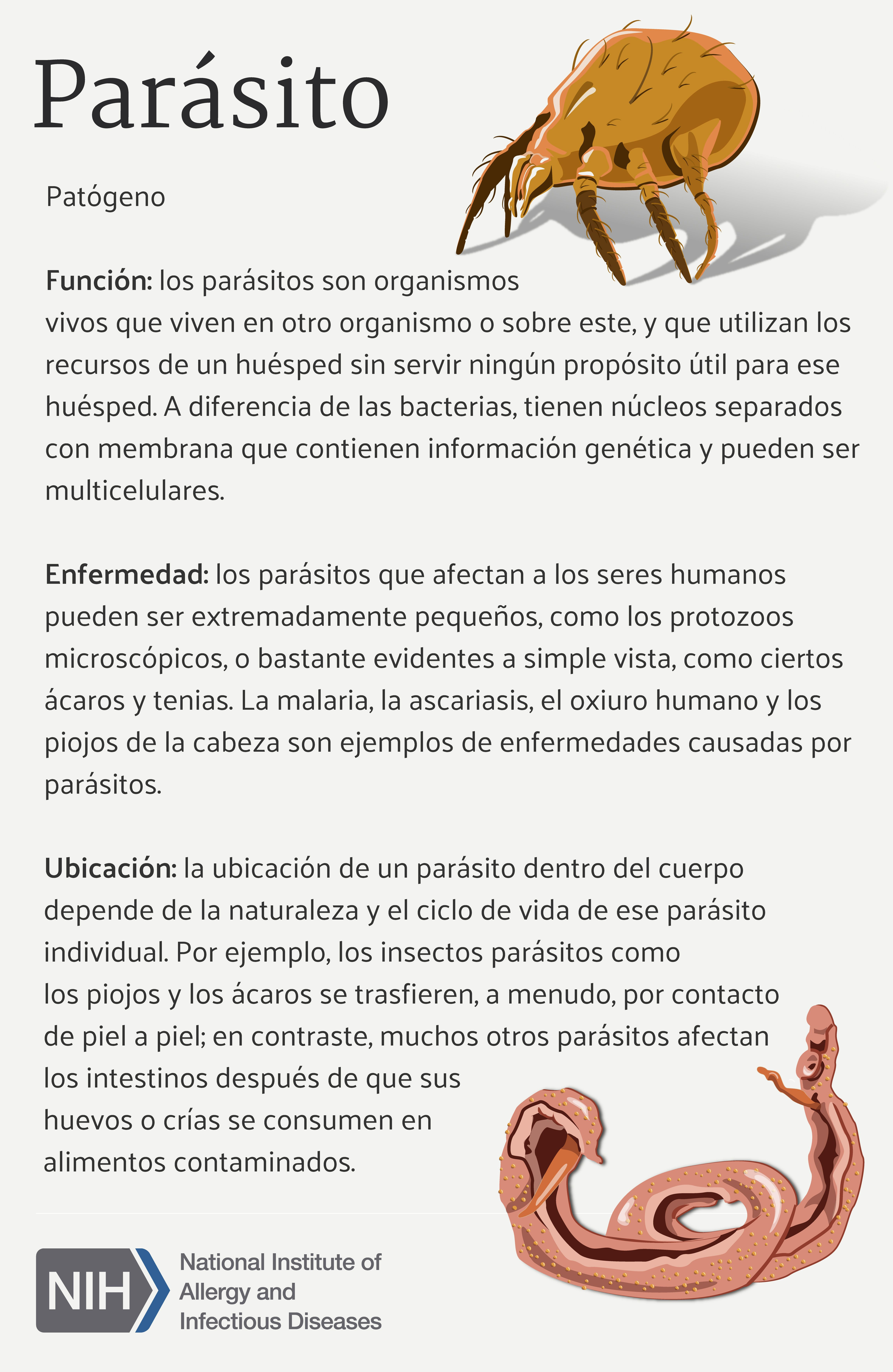 enfermedades causadas por bacterias y parasitos
