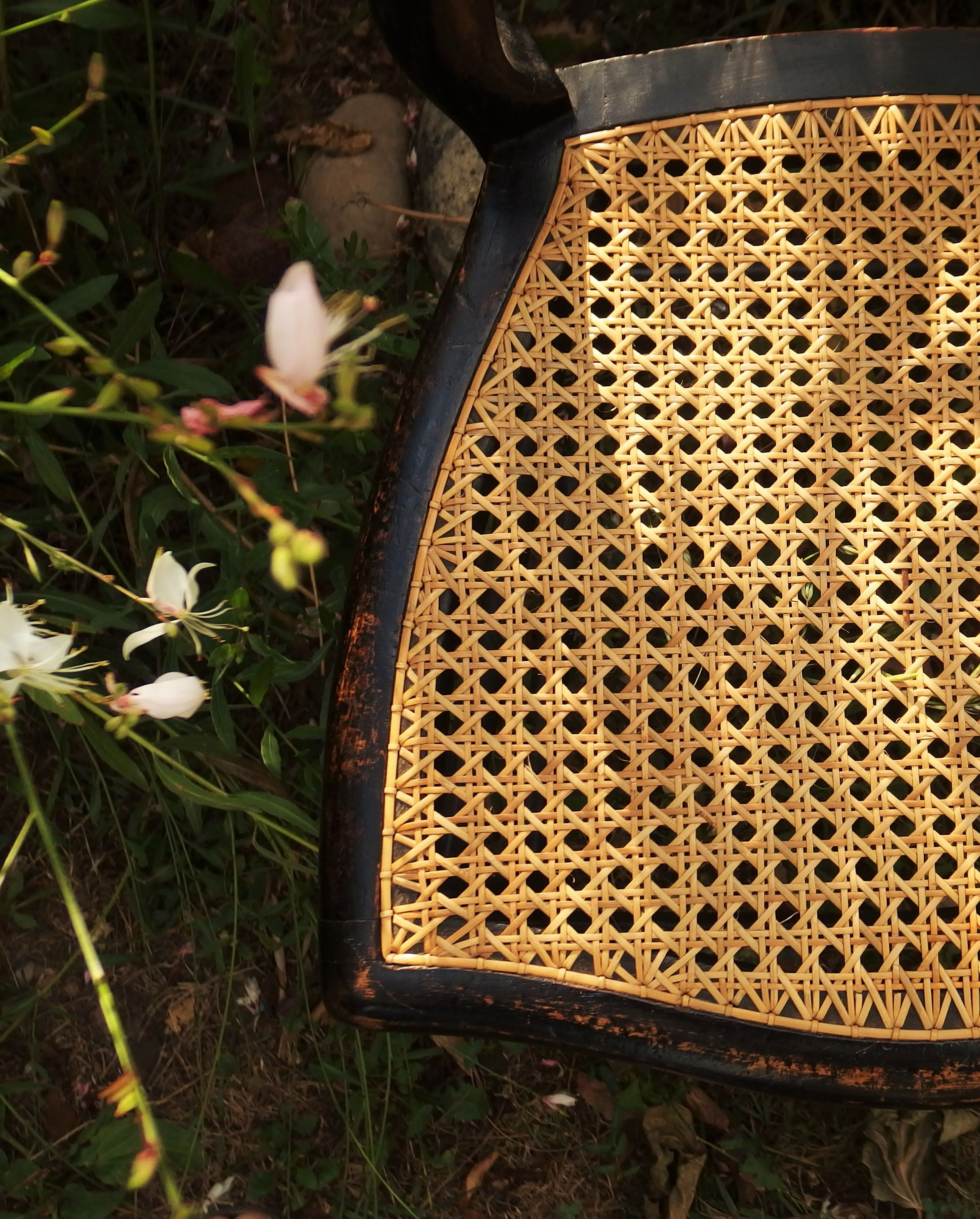 Chaise cannée XIXe en bois noirci cannage fran§ais  six brins