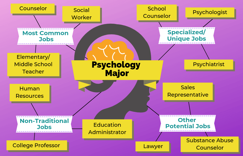 12 Jobs For Psychology Majors Psychology major