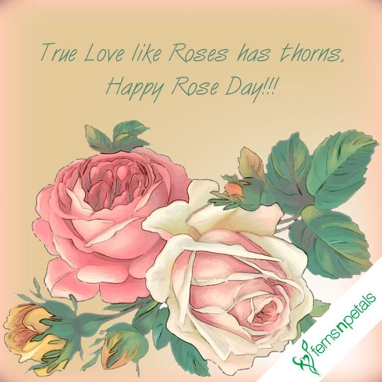 Quotes Rose Day Ferns N Petals Wishes For Friends Flirting Quotes Funny Greeting Card Image