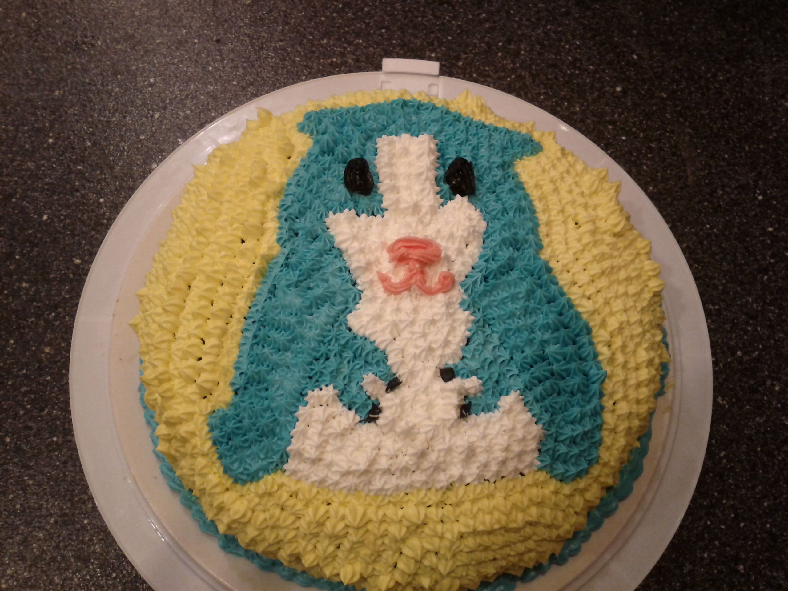 Hamster Birthday Cake Ps Cakes And Cookies Pinterest Birthday