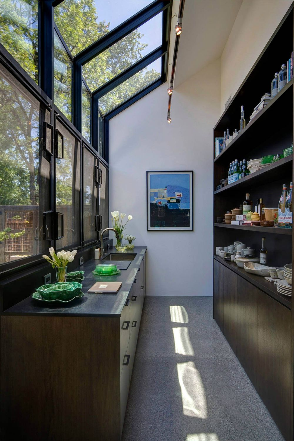 Contemporary pantry with an atrium in 2020 pantry design