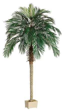 Phoenix Palm Tree 7ft Small Artificial Plants Artificial Plant Wall Artificial Plants Outdoor