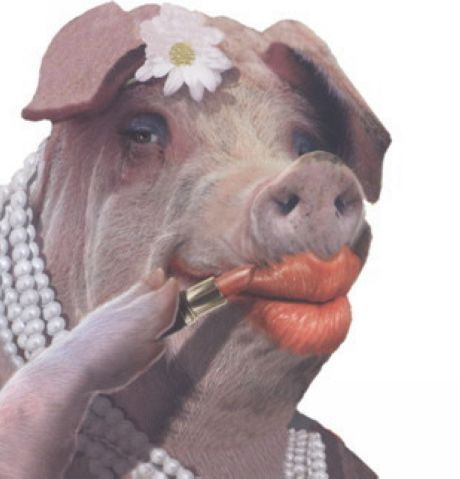 Image result for pig in lipstick is still a pig gif