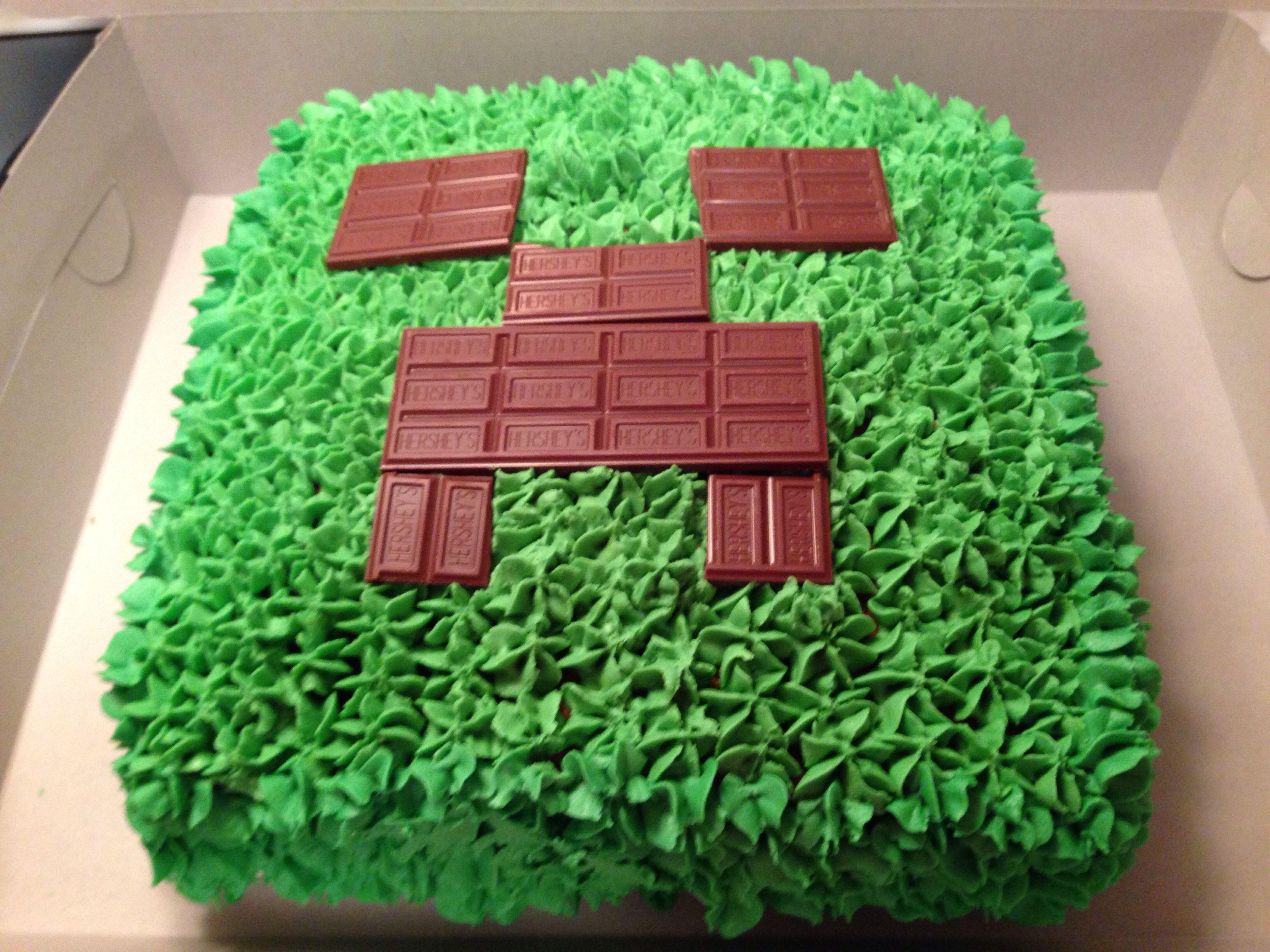 Decorating Ideas > Minecraft CakeIm Pretty Sure This Is Easy Enough T ~ 024119_Cake Decorating Ideas Minecraft
