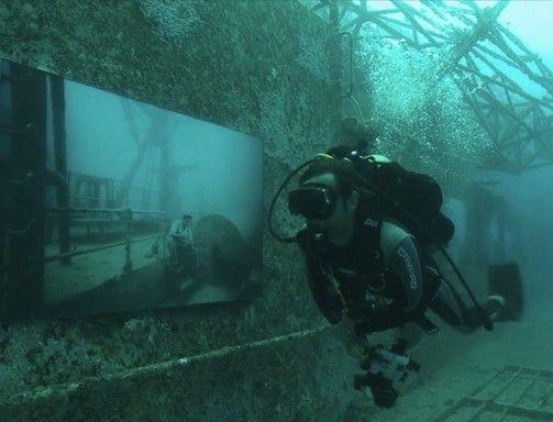 Scene di vita quotidiana sott'acqua 12