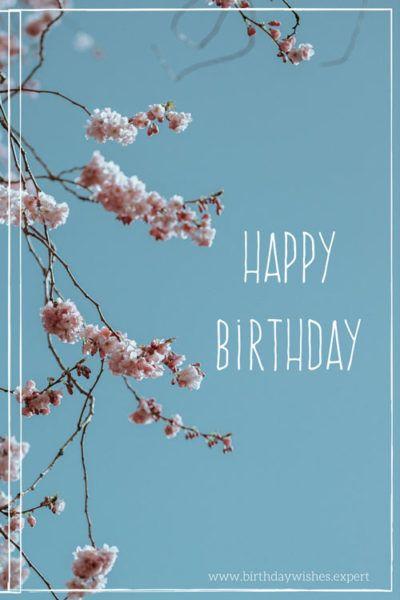 15 Birthday Cards To Pin And Share Geburtstag Spruche Und Zitate