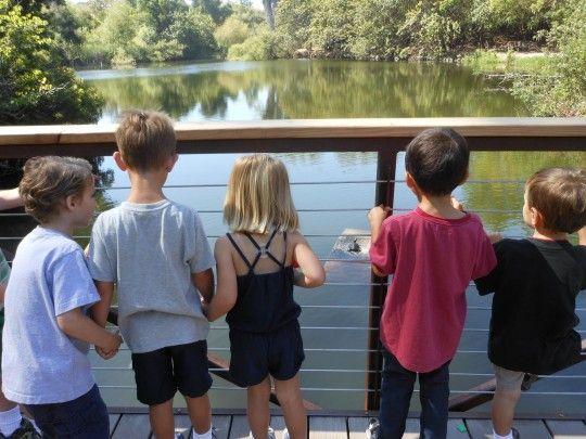 Nature Kids Splash Long Beach California Events