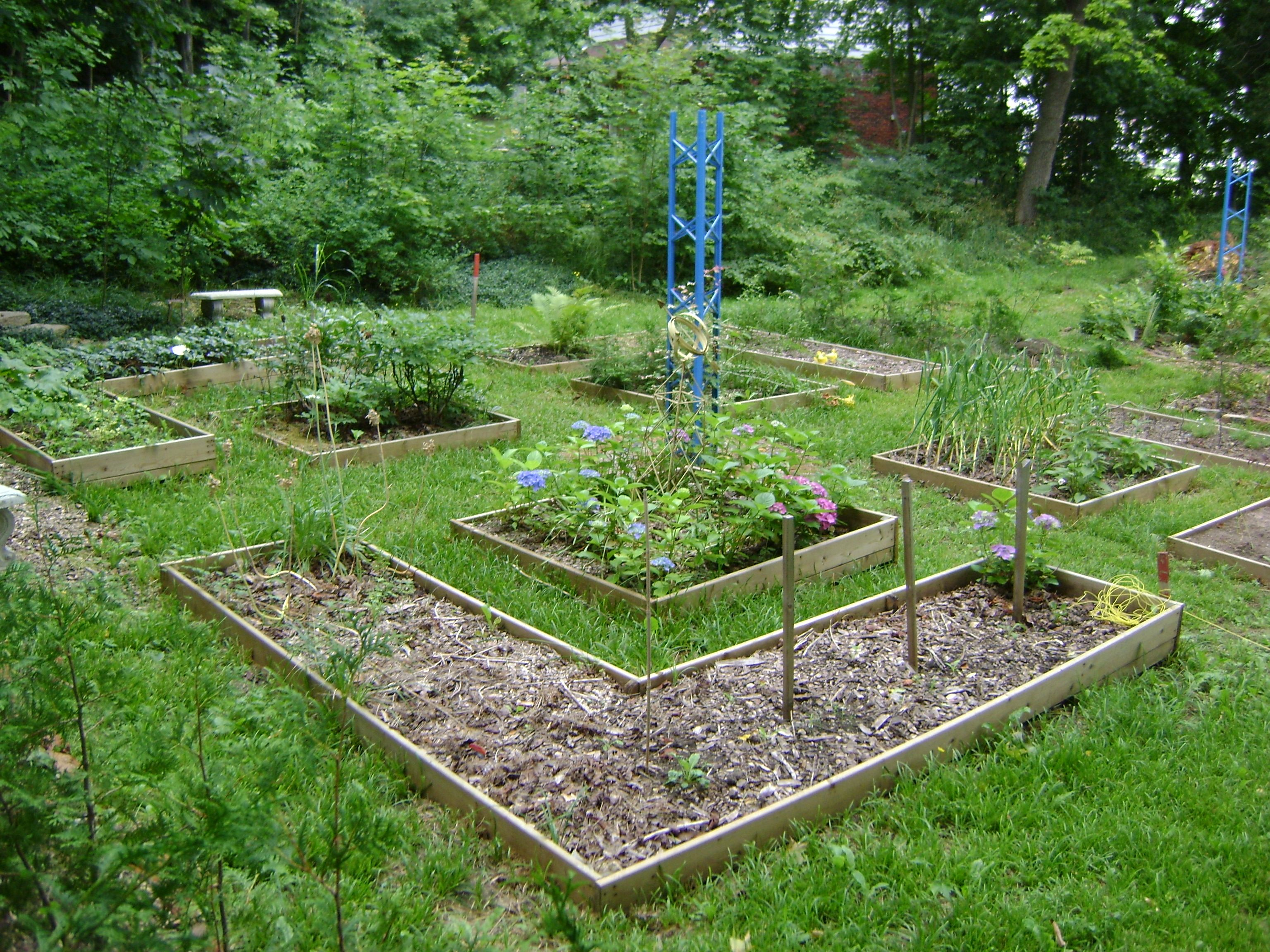 Cute Vegetable Garden Ideas Part - 18: Cute Vegetable Garden Ideas * Click On The Image For Additional  Details.(This Is