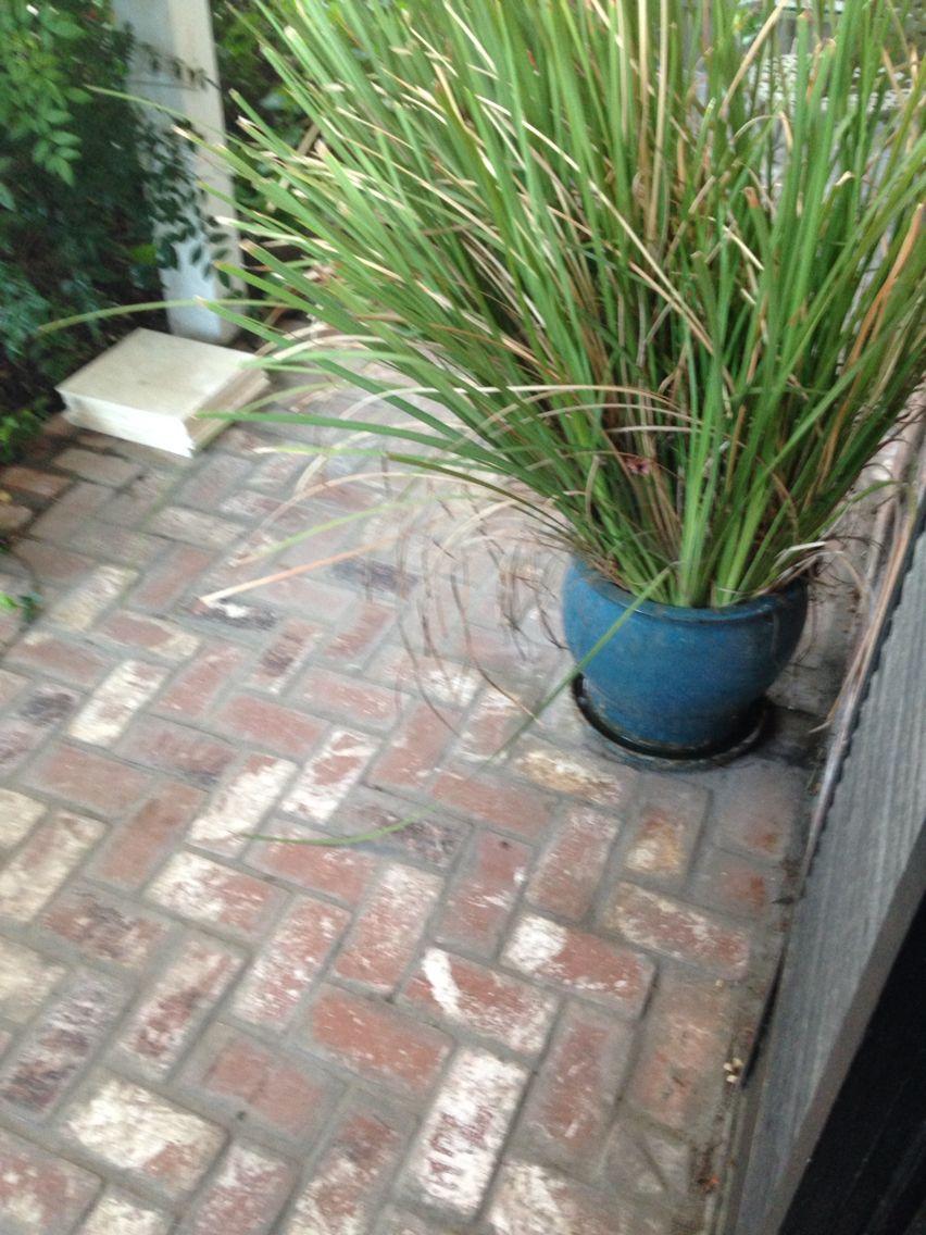 I Put A Brick Veneer Over My Front Porch Concrete In A Herringbone