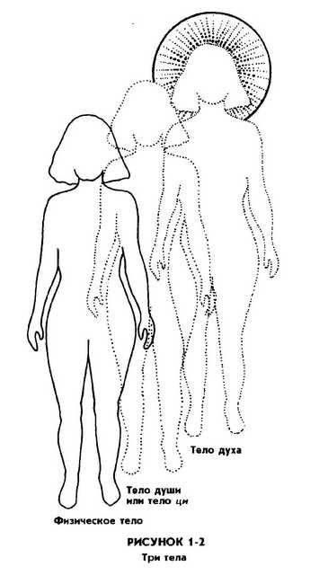 Совершенствование женской сексуальной энергии pdf
