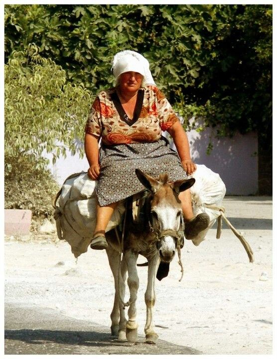 Image result for albanian with donkey