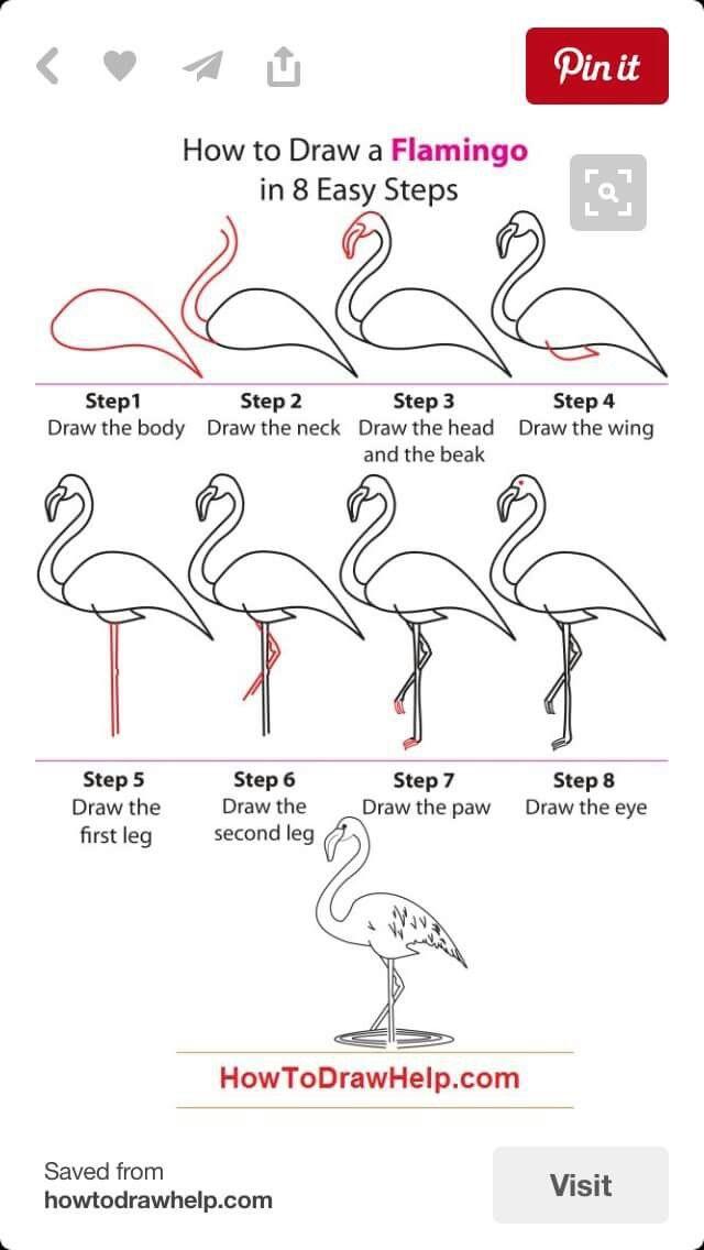 Draw A Flamingo Nasil Cizerim Drawings Flamingo Art Flamingo