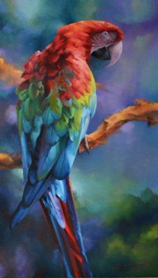 Rain Maker By Tom Shepherd Parrots Art Artwork Bird Art